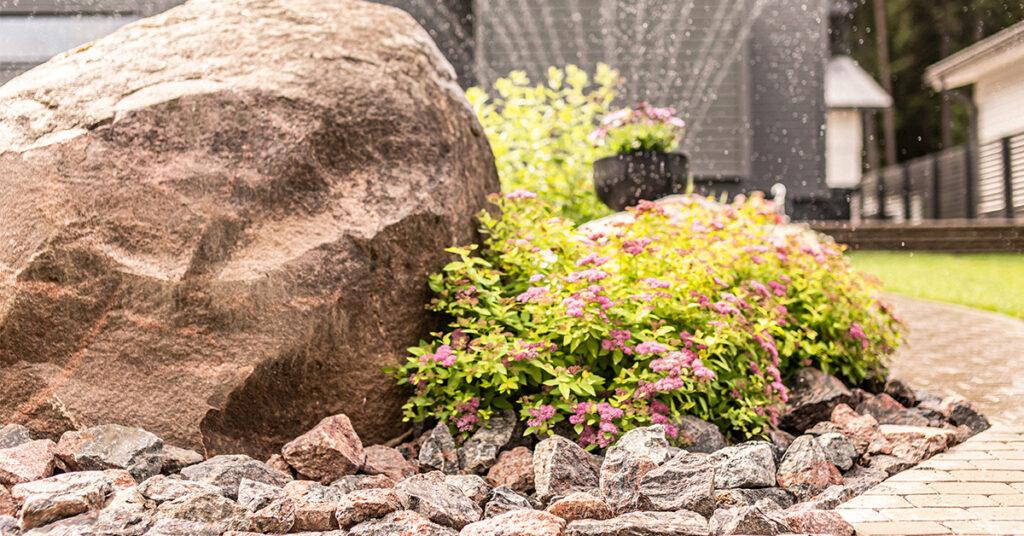 Kivillä somistettu kukkaistutus ja kiveyksellä päällystettyä pihaa