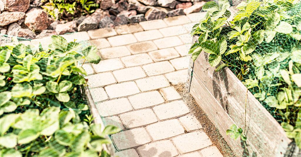Kiveys puutarhan kasvulaatikoiden välissä